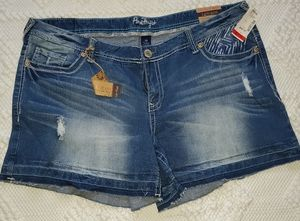 Amethyst Distressed Jean Shorts